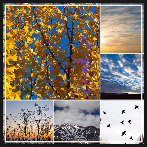 air-collage